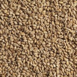 Солод Malteurop Пшеничный