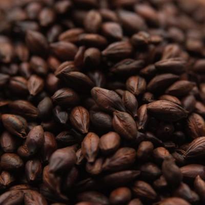 Солод Roasted Barley (Weyermann) 0,25 кг купить