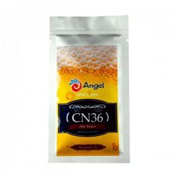 Пивные дрожжи Angel CN36 Ale (12 g)